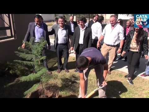 21 de Marzo - Dia Forestal Mundial - Acto en Residencia Universitaria