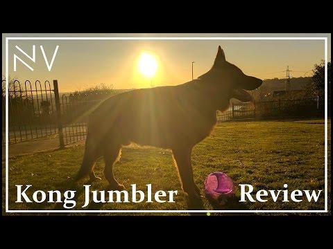 German Shepherd Puppy Football (Kong Jumbler Ball Review)