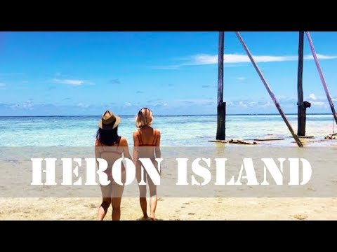 The Beauty Of Heron Island, Snorkel With Turtles, Travel Tips & Advice| Amezvlogz Episode 4