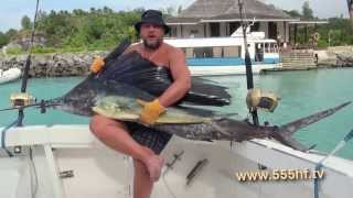 Рыбалка. Морская рыбалка. Рыбалка видео. Поймал. Голубой марлин. Катушка. Удилище. Леска.(На сайте www.555hf.tv (интернет-телевидение) Вы можете посмотреть эту передачу полностью онлайн бесплатно. Смотр..., 2013-11-02T07:10:17.000Z)