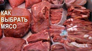 Как отличить молодое мясо от старого. Как выбрать мясо. Советы Анны Подоленчук