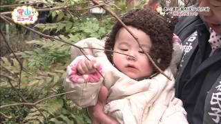 守山ニュース(平成29年2月3日・17日放送分)