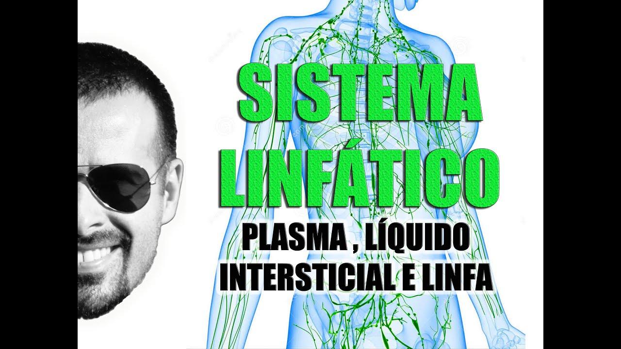 Sistema Linfático - Plasma, Líquido Intersticial e Linfa - Anatomia ...
