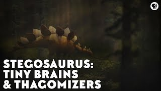 Stegosaurs: Tiny Brains & Thagomizers