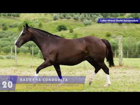 LOTE 20 - Baderna da Condorita