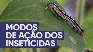 Modos de ação dos inseticidas