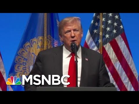 Art Of The Deal Co-Author: Trump Is 'Terrified' Of Midterms Loss | The Beat With Ari Melber | MSNBC