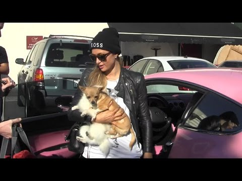 X17 EXCLUSIVE - Paris Hilton Takes Dogs Out And Plays Musical Chairs With Luxury Cars