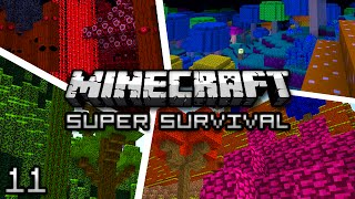 Minecraft: Super Modded Survival Ep. 11 - DON