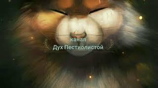 Песчаная Буря и Пестролистая \ Коты-воители\Подруга Моя..