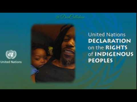 The United Nations Declaration On The Rights Of Indigenous People