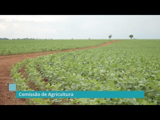Veja quais são as prioridades das Comissões de Agricultura e do Meio Ambiente - 11/03/19