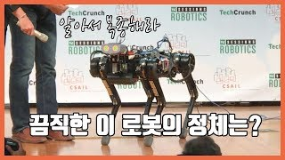 이런게 있어?! 실제로 존재하는 쇼킹한 로봇들!