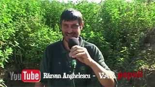 ARTHUR - ICE BUCKET CHALLENGE (promo)