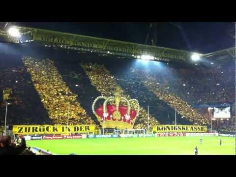Amazing Choreo by Borussia Dortmund - Faltin Travel
