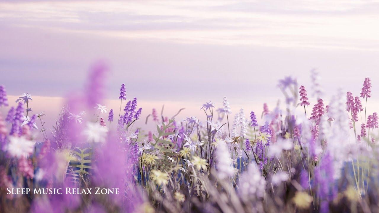 Zen Garten Musik: Sanfte Entspannungsmusik Zum Einschlafen, Wassergeräuschen zum Regeneration ◊S04