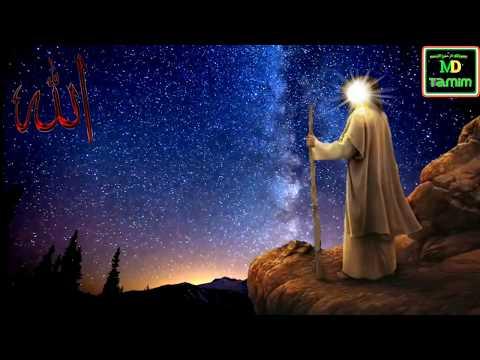 আল্লাহ এবং হযরত মূসা আঃ এর কথোপকথন || Conversation between Allah and his Prophet Moosa || Md Tamim
