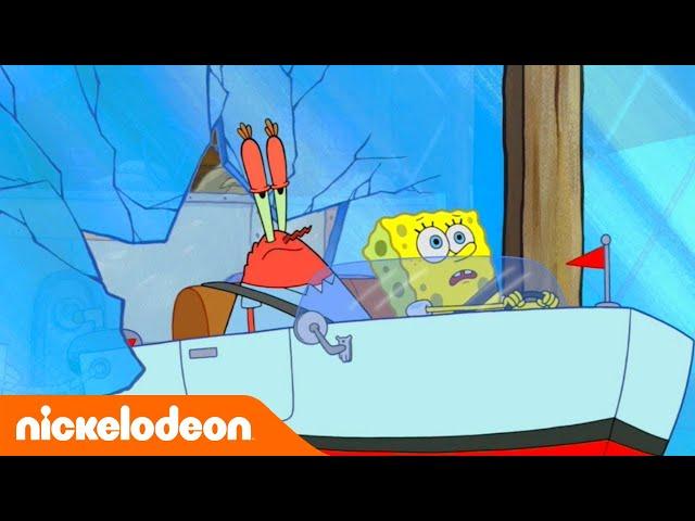 SpongeBob Squarepants | De duikschool van Meneer Krabs | Nickelodeon Nederlands