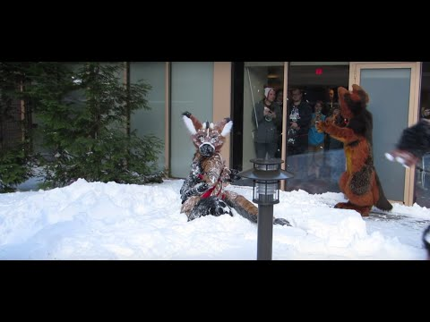 Telephone Calling Birds And Playing In The Snow @ANE2016