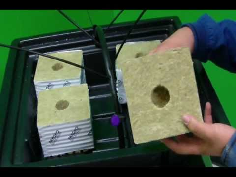 How To Build A Top Feed Drip System Hydroponic Tutorials Youtube