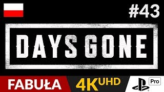 Days Gone PL  #43 (odc.43)  Wyprawa po sprzęt AGD | Gameplay po polsku 4K
