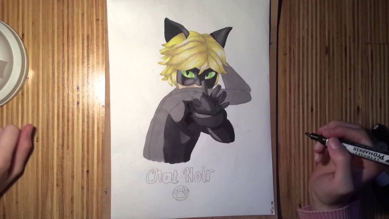 This is a picture of Canny Chat Noir Drawing