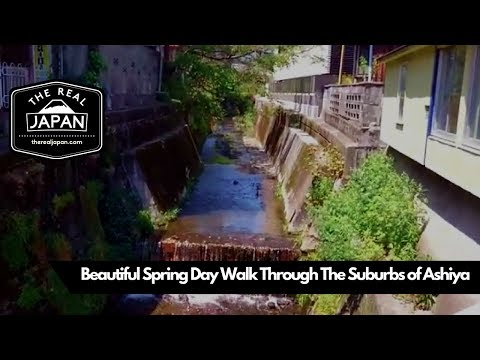 Beautiful Spring Day Walk Through The Suburbs of Ashiya, Hyogo Prefecture | The Real Japan