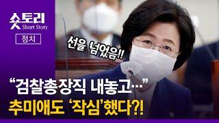 """[숏토리:정치] """"검찰총장직 내놓고…"""" 추미애도 '작심…"""