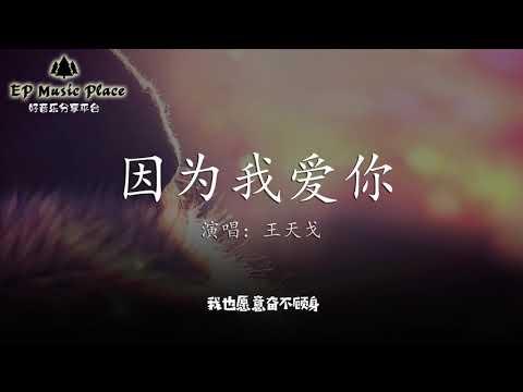 因为我爱你 - 王天戈 【我愿意等你 戒掉她留给的体温】【动态歌词版】