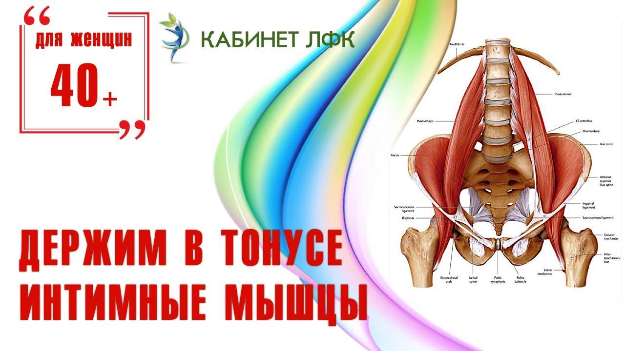 Вагинальные мышцы тренировка видео