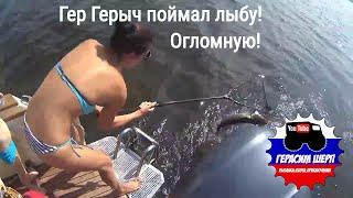 Хорошо рыбачить вместе! Герасим Герасимович поймал судака! Огломнова! ч1
