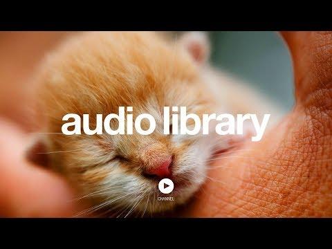 Jingle Punks | YouTube Audio Library