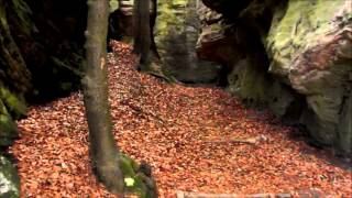 Luxembourg: Little Switzerland - Nature and travel video