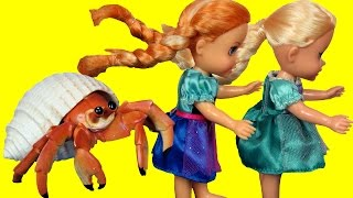 CRAB Encounter! Toddlers ELSA & ANNA at Beach - Afraid of CRAB - Mystery Treasure - Shopkins