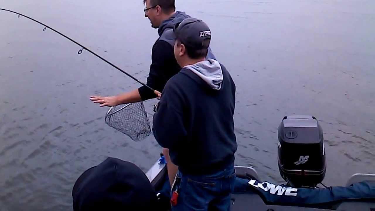 Big striper from wallenpaupack fishing adventures youtube for Lake wallenpaupack fishing report