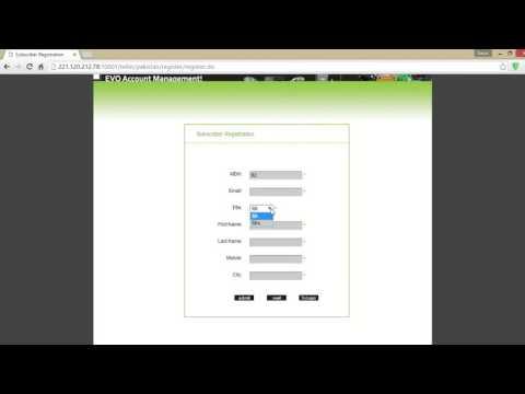 How to check 3G Evo Data usage