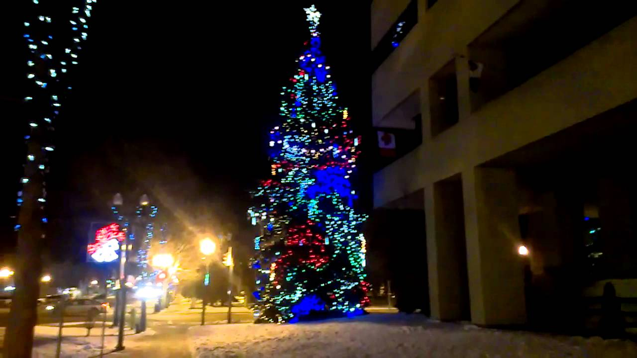 Christmas LED Lights On Tree Beside City Hall Red Deer AB