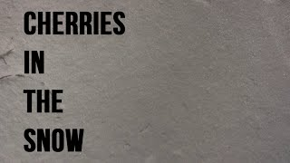 Cherries in the Snow [book trailer]