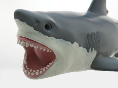 Toy Shark For Children