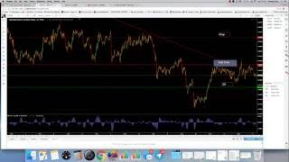 Learn to trade forex in 1 hour
