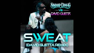Snoop Dogg ft. David Guetta - Sweat [Bass Boosted] [HD]