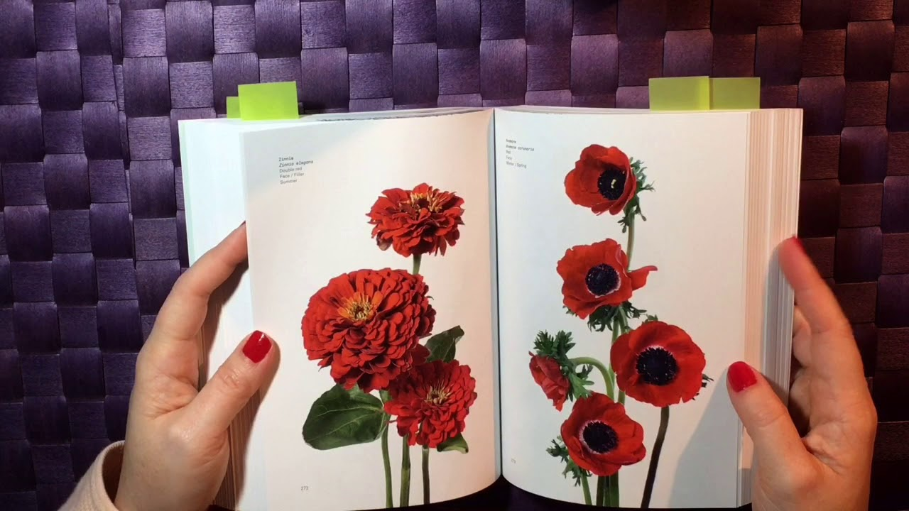 Book Review Flower Color Guide Youtube