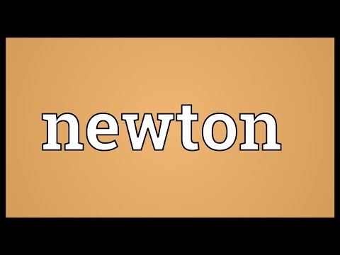 Newton Meaning