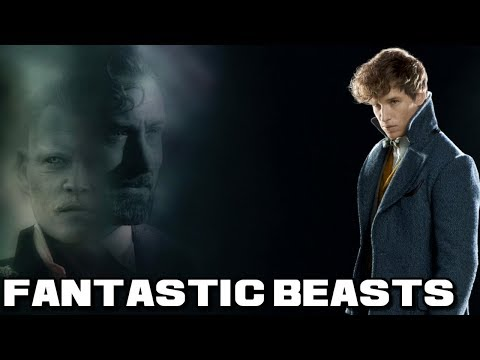 Fantastic Beasts 3 Everything You Need To Know - Release Date And Rio De Janeiro