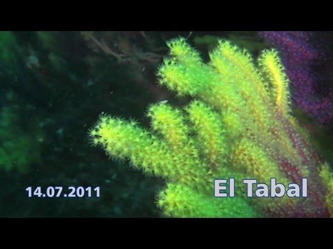 Calella de Palafrugell - 14.07.2011 El Tabal