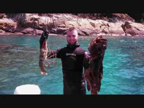 Spearfishing Mackay