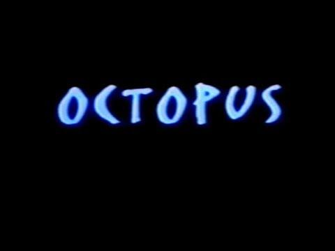 Octopus   2000