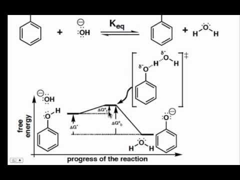 The Proton Transfer Step On A Reaction Coordinate Diagram Youtube