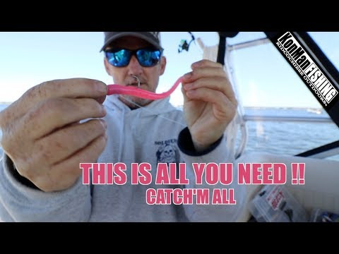 WEAKFISH SEA TROUT MADNESS UNDERWATER ACTION