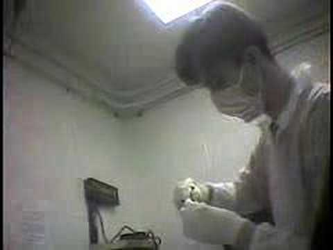Animal Testing? Animal Cruelty.
